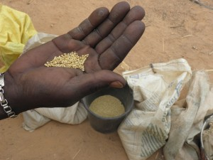 Burkina, renverser des perspectives dans Aminata Traore Bendogo-6-2-blog-300x225