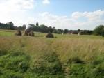Le chant des cailles dans agro-écologie le-champ-des-Cailles-150x112