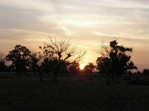 Cinq semaines au Burkina Faso dans François d'Assise Ouédraogo savane-coucher-300x225