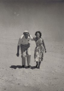 dans le désert égyptien blog
